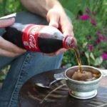 coca cola insolite
